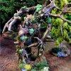 Tree_Herder_2_Kings_of_war.jpg