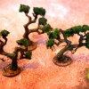 Dschungelbäume